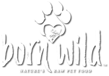 Born Wild Raw Pet Food for cats and dogs - PA, NY, and NJ